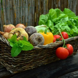 Grow More by Setting Vegetable Gardening Goals