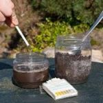 Fall is for Soil Testing! by Tom Dayton
